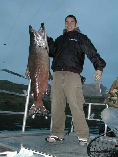 Kevin   Grimm AKA Bud landed this 40 lb Hanford Reach King Salmon.  This fish   just seemed to take his time getting to the boat - he used his weight to   prolong the battle.