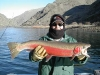 Clearwater Steelhead