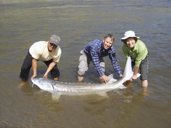 John Haymore with a Hells Canyon Sturgeon