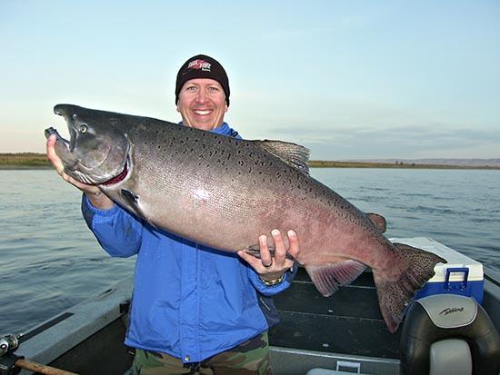 38 pound Hanford King Salmon