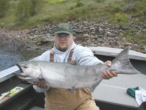 Clearwater Spring Salmon