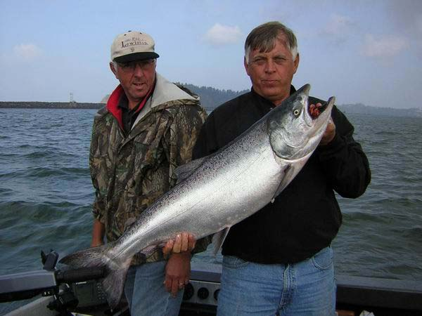Astoria King Salmon