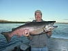 35 pound Hanford King Salmon