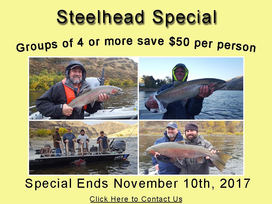 Steelhead Special