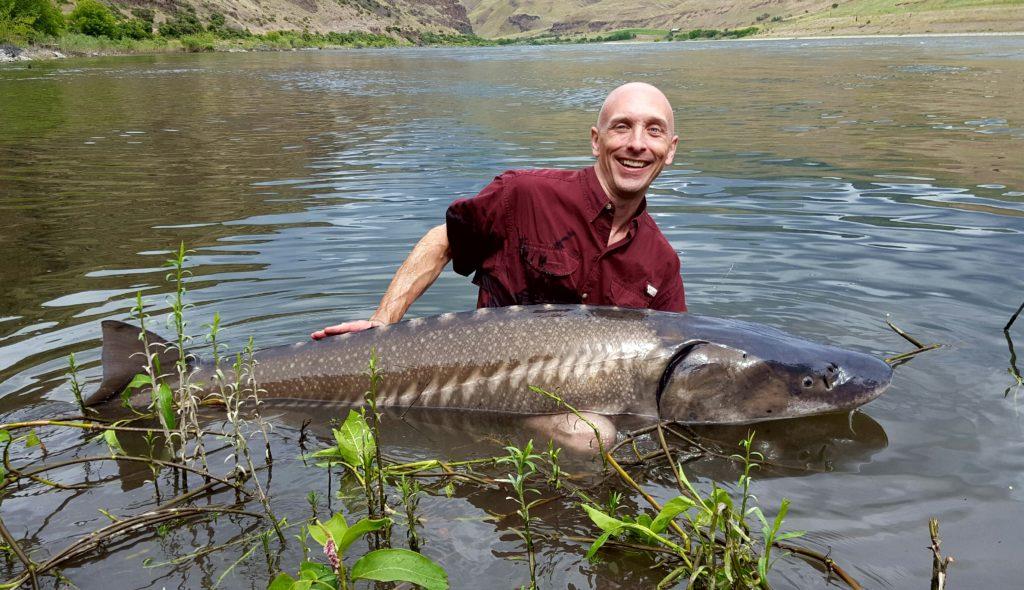 guided sturgeon fishing clarkston wa